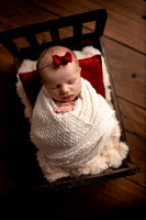 Albion, Illinois Children Family Newborn Photographer Senior Photography Studio Southern Illinois Evansville, Indiana Olney, Illinois Fairfield, Illinois Mt. Carmel, Illinois-56